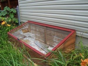 picture of a cold frame