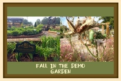 collage of Demo Garden photos