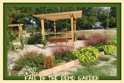 Pergola and butterfly garden in Demo Garden