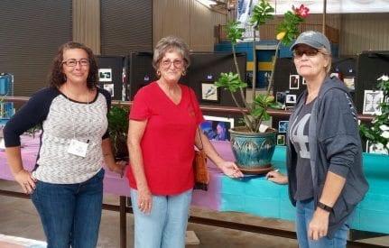 Master Gardeners judging plants