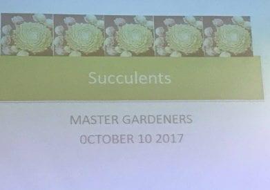 slideshow at October meeting