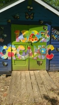 Colorful shed in garden