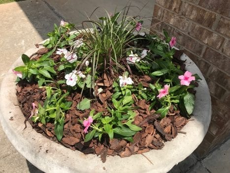 Cement planter in Jemison with flowers