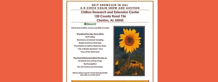 Showcase in Ag/Chick Chain Auction