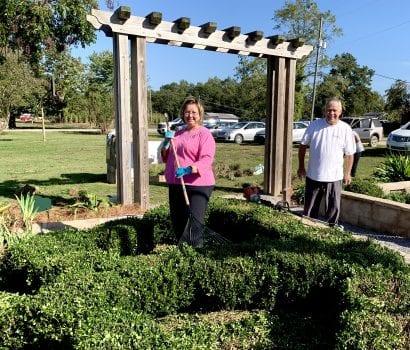 Treasia Bennett pruning box woods