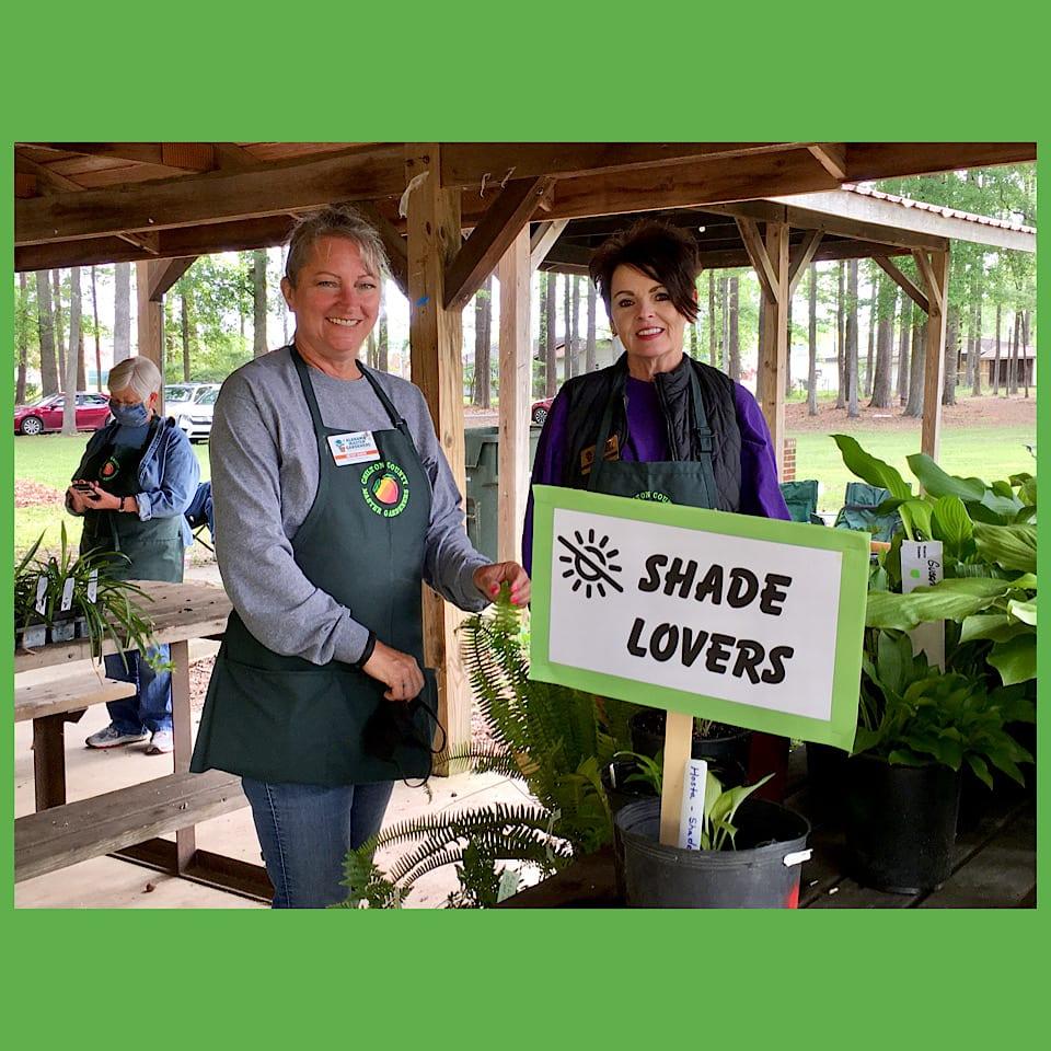 Volunteers at plant sale