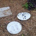 Personalized stepping stones