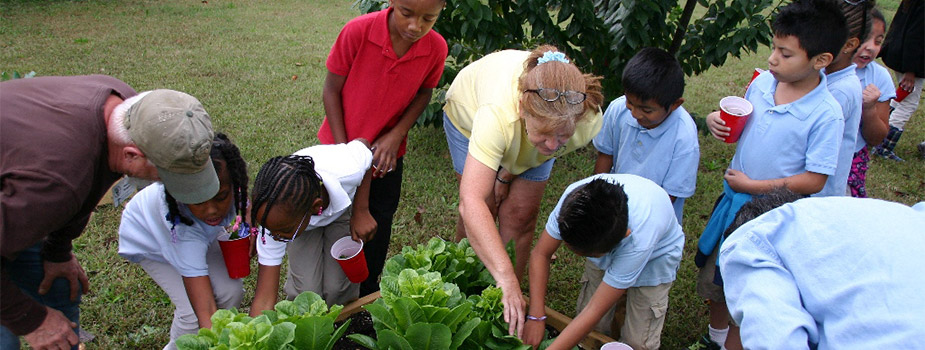 adult master gardeners teaching young gardeners in a raised bed