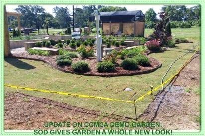 new sod for Demo Garden