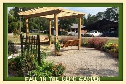 pergola with swings in Demo Garden