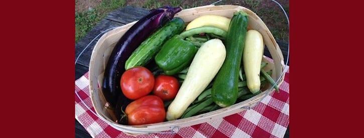 July Gardening Activities