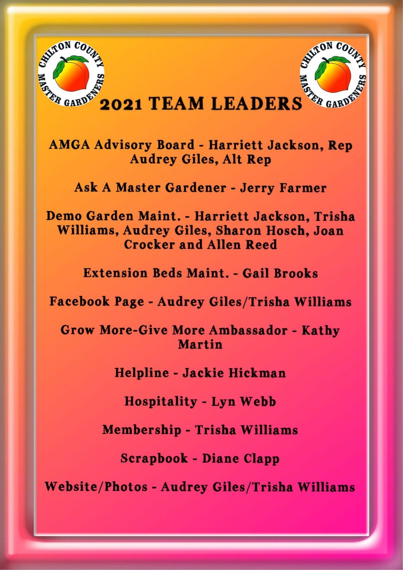 Team leaders 2021