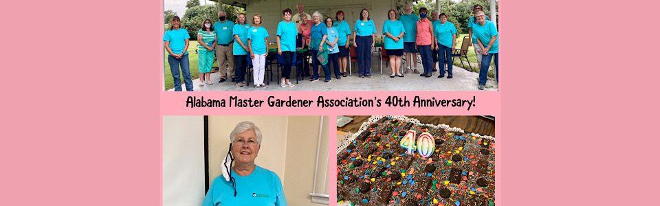 Celebrating 40 Years of MG